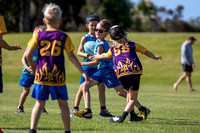Papamoa Primary Touch Rugby Year 4-2889